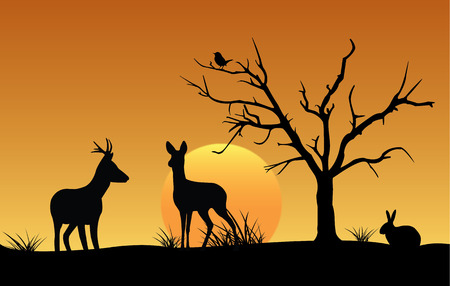roe deer: Silhouette of deer, hare and bird at sunset