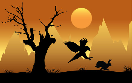 goshawk: Silhouette of hawk chasing hare at sunset