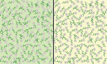 margriet: Twee madeliefjes vector patronen met groene en gele achtergrond