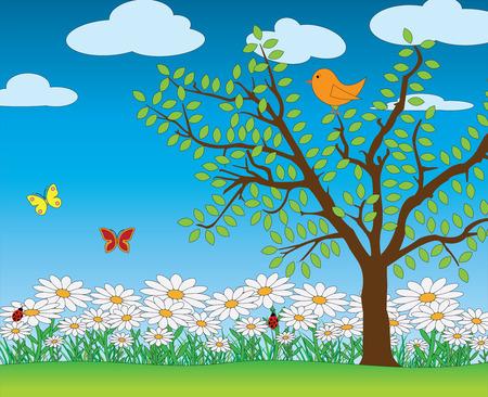 marguerite: Nature spring scene vector Illustration