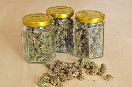Photo of dry cannabis buds stored in a glass jars