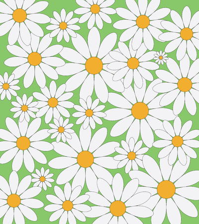 asteraceae: Daisies pattern on a green background