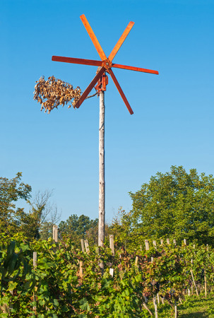 Traditional wind rattle for scaring birds in vineyard, Slovenia