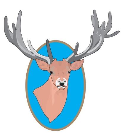 Deer Stock Vector - 12481540