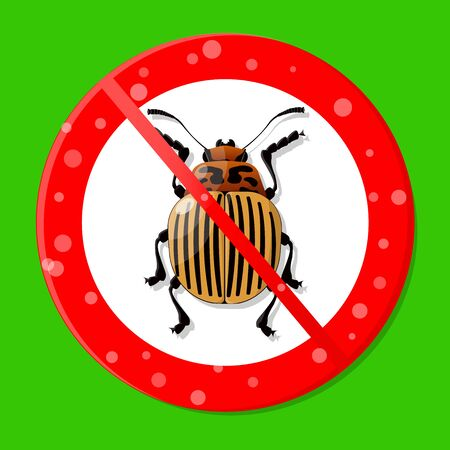 Vector image of a Colorado potato beetle crossed out with a red prohibition sign. Elimination of insect pests. Vectores