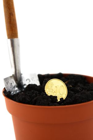 Coin in pot on white background