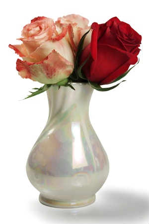 flowers in vase on white background