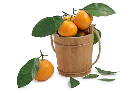 freshness tangerine and wooden pail