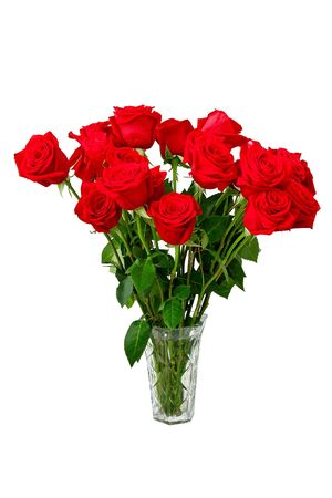 roses in vase on white background