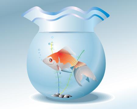 goldenfish: vector decorative illustration.goldenfish in aquarium Illustration