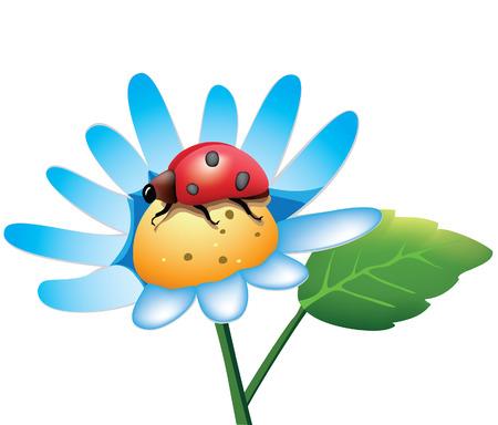 ladybug Stock Vector - 6580915
