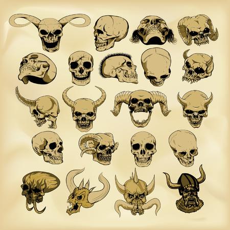 Hand-drawn human skulls illustration Иллюстрация