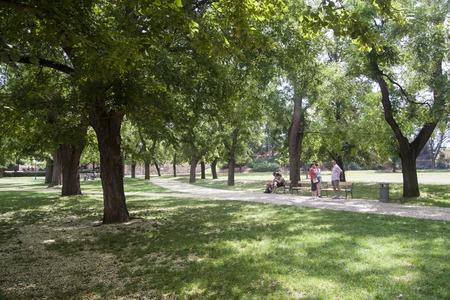 Prague, Czech Republic - July 14 2018: People sitting on a bench under the trees at Vyšehradské sady park on a hot summer day