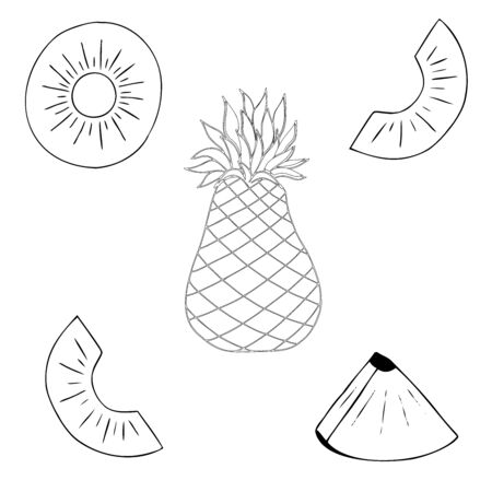 Set of pineapple decorative elements , doodle vector illustration of tropical fruits