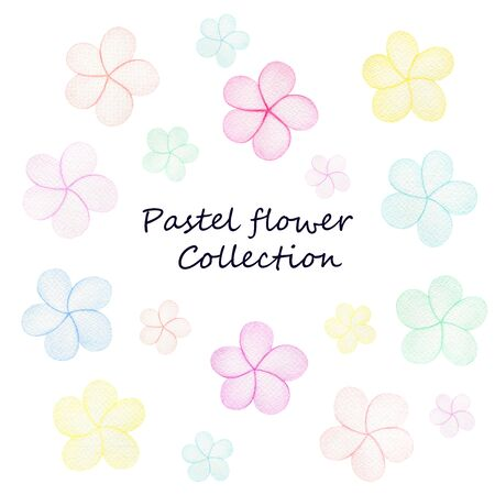 simple pastel flower collection, colorful and happy flowers in watercolor illustration isolated on white