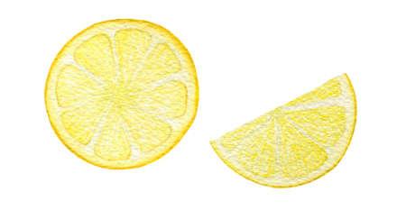 watercolor lemon slices isolated on white, sour fruit illustration, lemon fruit design