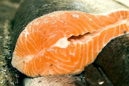 Rows of fresh salmon at the fish market