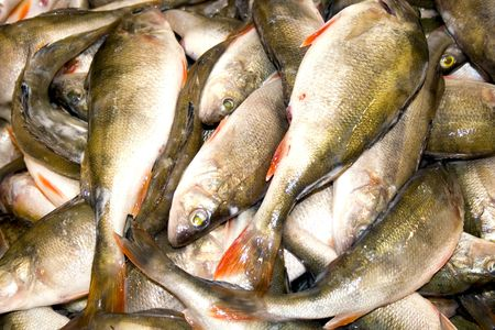 Heaps of freshly caught fishes Stock Photo - 4770197