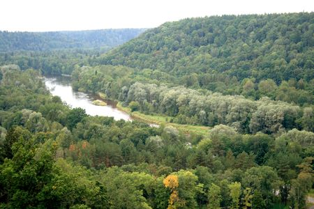 Forests and river Gauja on a national park Sigulda