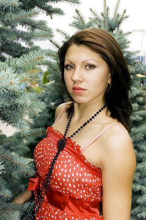 Portrait young attractive brunette on a background  fir-tree photo
