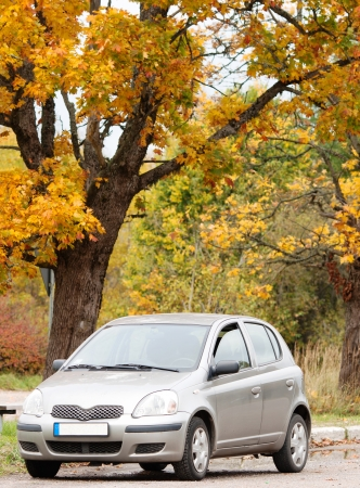 Small economy car in the autumn forest Stock Photo - 16815628