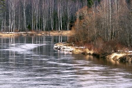 sigulda: R�o Gauja por una primavera temprana en el parque nacional Sigulda, Letonia