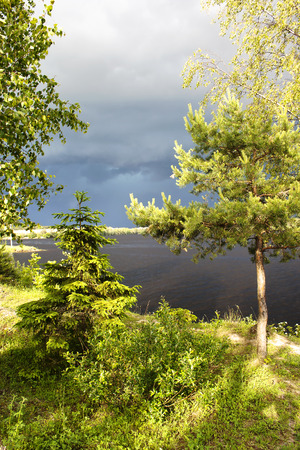 ashore:  In the young forest ashore lake before a summer thunderstorm