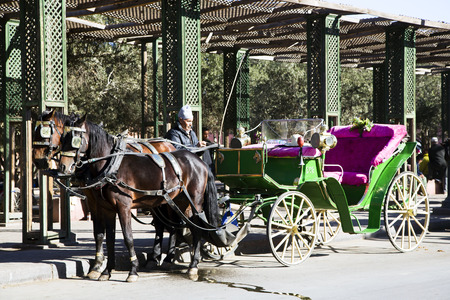 29 th, DECEMBER 2013  MOROCCO, MARAKECH  Vintage tourists carriage and coachman outside Marrakech, Morocco