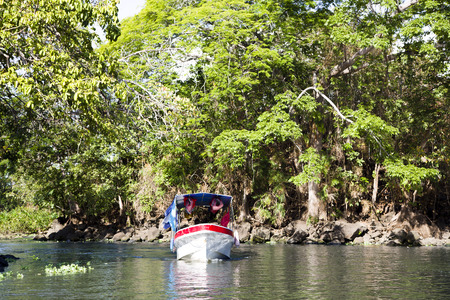 largest tree:  Wonderful landscape of coastline of lake Nicaragua, the tenth largest fresh water lake in the world and second largest in Central America is noted for the presence of some 350 large islands and salt-water fauna like tuna and sharks.