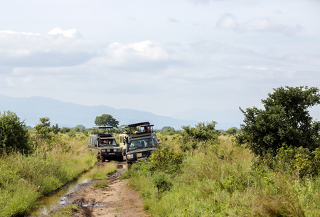 washed out: AFRICA, KENYA, MAY, 08, 2016 - Jeep-safari with people stuck on the washed out roads in Tarangire National Park, Tanzania.