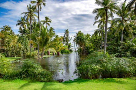 Tropical palm park with a lake on the shores of the South China Sea in Phan Thiet, Vietnam Stock fotó