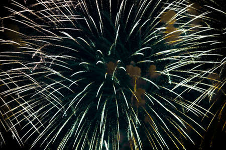 Beautiful salute and fireworks in the night sky.