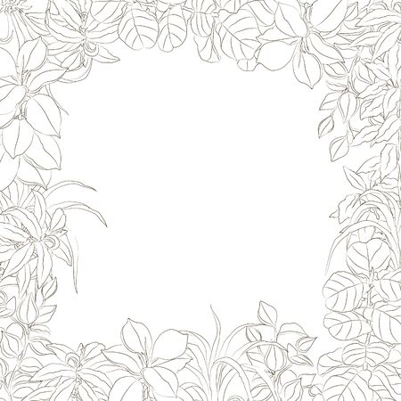 vector hand drawn sketchy simplified floral frame isolated on white. Design element, natural and floral themes, image for printed goods, coloring books, interiors, wallpapers, posters.