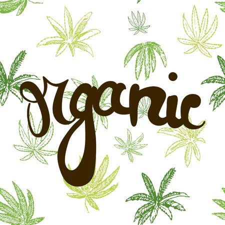 illustration vectorielle dessinés à la main avec motif de cannabis sans couture et signe organique devant lui. Vecteurs
