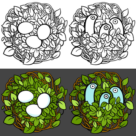 cosiness: Birds in the nest. Eggs in the nest. Vector editable illustration in cartoon style Illustration