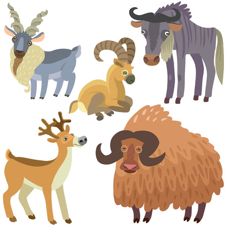 cloven: cartoon ungulate animals set. Illustration of ungulate animals on white background