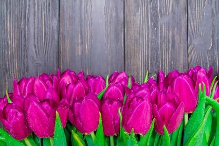 Womens Day kopieerruimte met felroze tulpen op een zwarte houten achtergrond, texturen Stockfoto