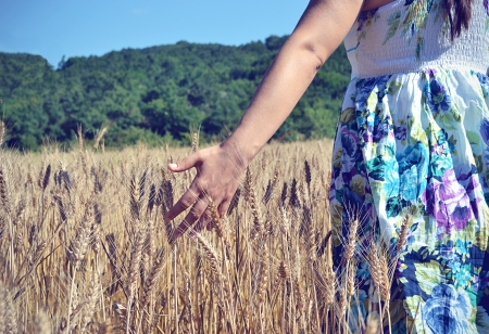 Nature, Human Hand, Women, photo
