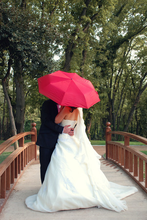 Wedding couple kissing veil covered Stock fotó