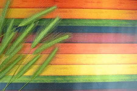sheaf: Wheat Ears on the Wooden Table. Sheaf of Wheat over Wood Background. Harvest concept
