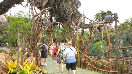 Pandora - The World of Avatar at Disneys Animal Kingdom
