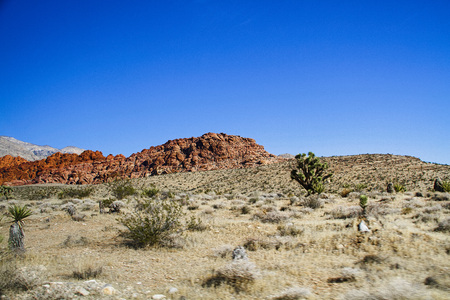 nv: Red Rock Canyon NV � October 6 2016: rock face at Red Rock Canyon National Conservation Area. The national park is a popular tourist destination near Las Vegas Nevada. Stock Photo