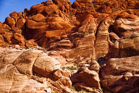 Red Rock Canyon NV – October 6 2016: rock face at Red Rock Canyon National Conservation Area. The national park is a popular tourist destination near Las Vegas Nevada.