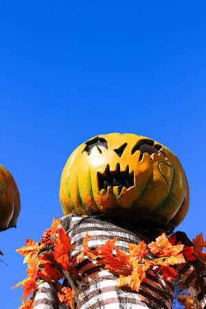 Halloween decorations concept.Close up of Jack O'lantern, vintage lanterns, pumpkins, skull, autumn leaves. Colorful Halloween. Happy Halloween scene background