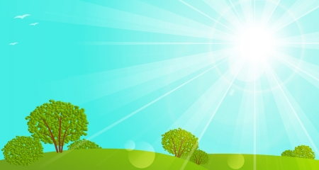 Sunny meadow with green trees Vector