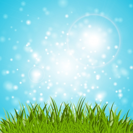 Grass and sky vector background Vector