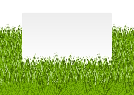 Paper banner in green grass Stock Vector - 14941773
