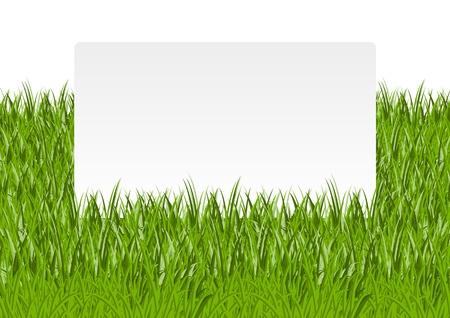 lawn: Papier banner in het groene gras Stock Illustratie