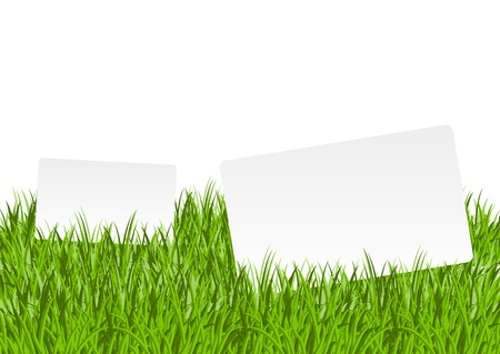 Two paper banners in green grass Vector
