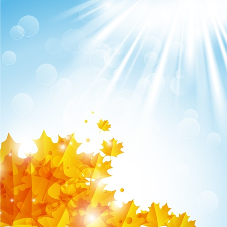 Sunny autumn leaves background Vector